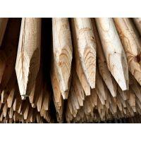 Dřevěný kůl 6/100 cm impregnovaný